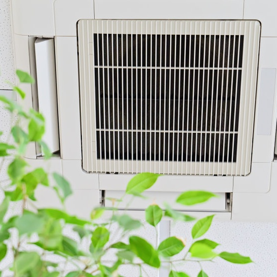 vent and plant